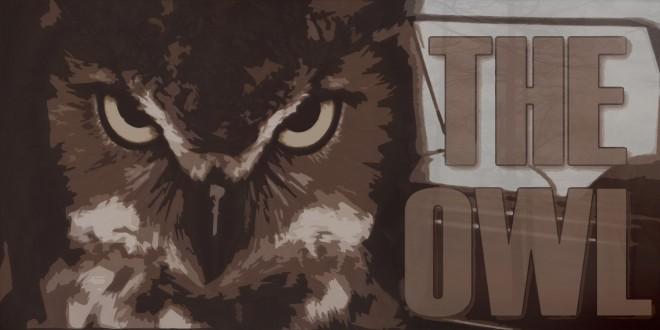 the-owl-11