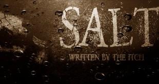 salt-12-ws