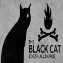 the-black-cat-ctfdn-2-store