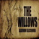 the-willows-4-store