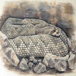 """""""Rattlesnake Ridge"""" by S.E. Schlosser (feat. Jordan Antle)"""
