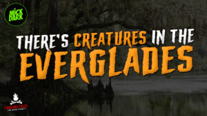 """""""There's Creatures in the Everglades"""" - Performed by Mick Dark"""