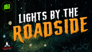 """""""Lights by the Roadside"""" - Performed by Mick Dark"""